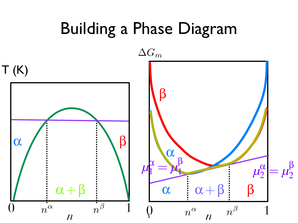 Building a Phase Diagram