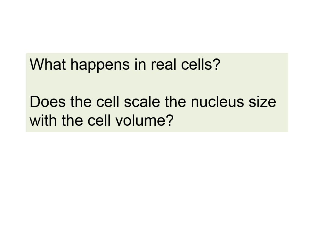 What happens in real cells?