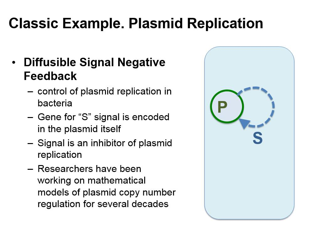 Classic Example. Plasmid Replication