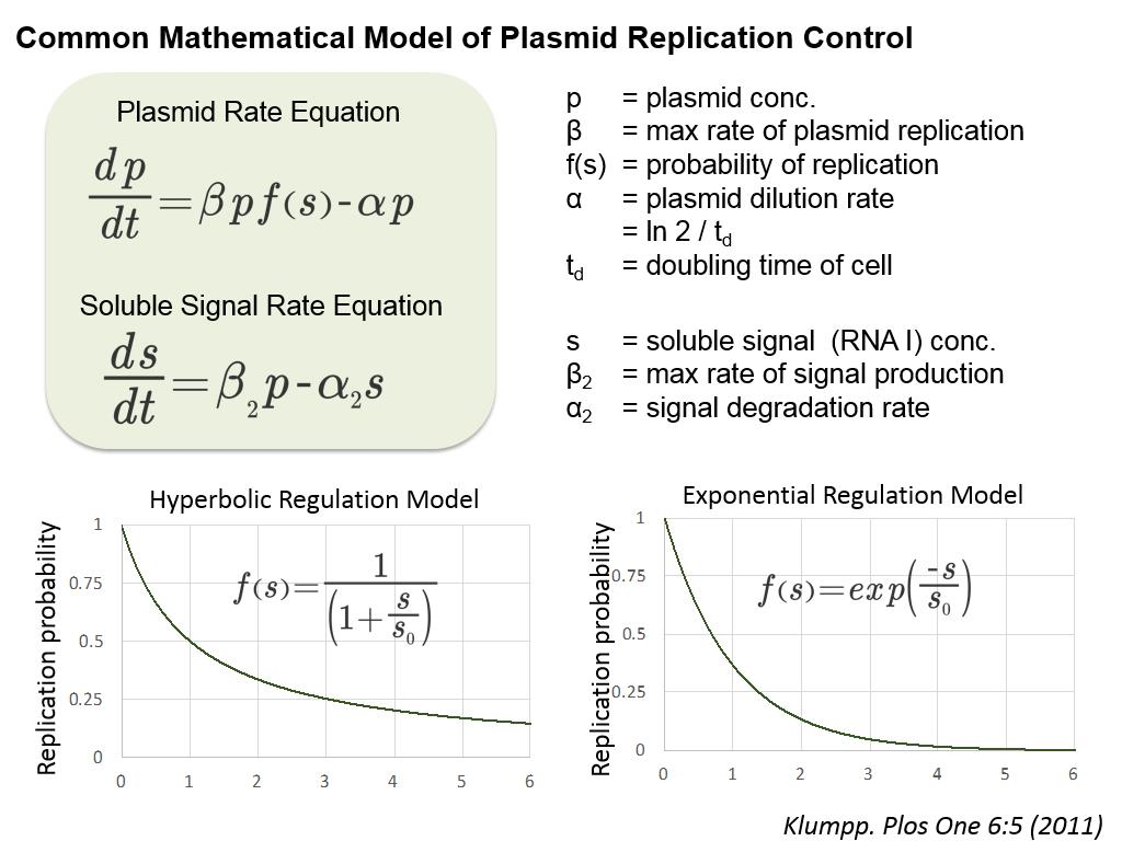 Common Mathematical Model of Plasmid Replication Control