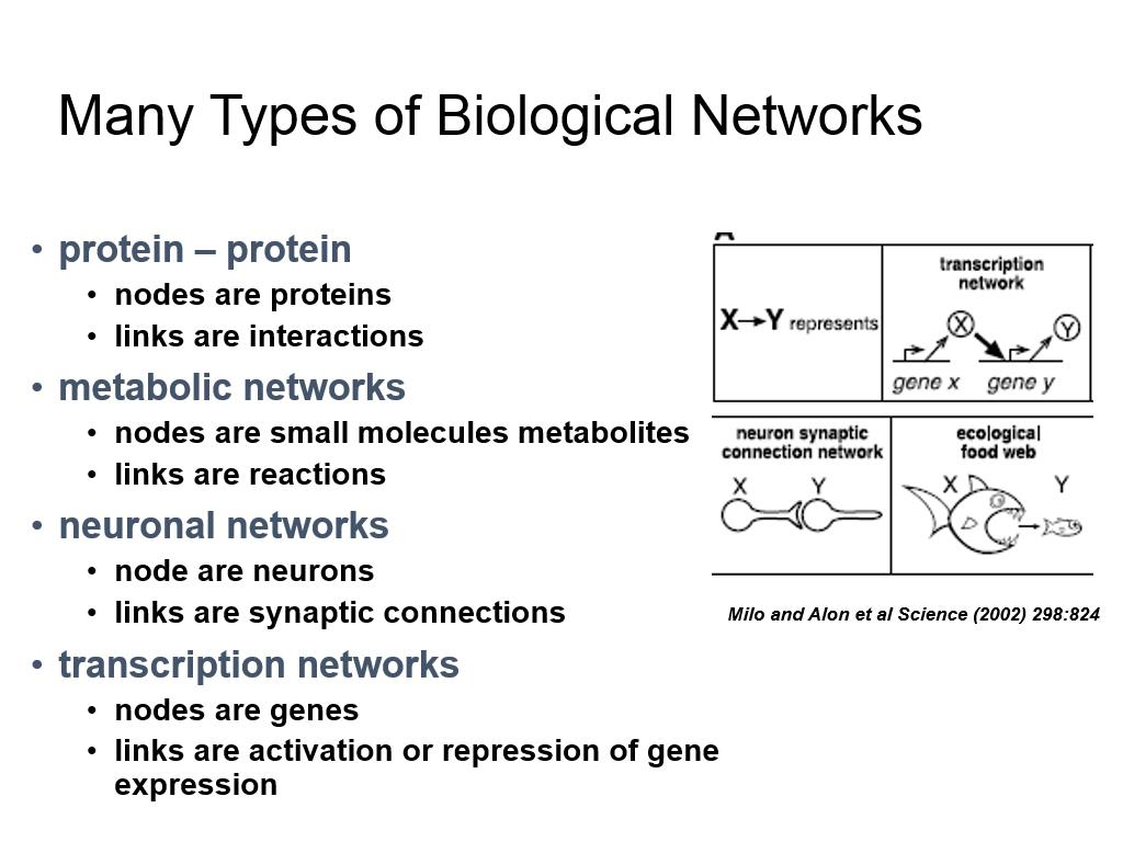 Many Types of Biological Networks