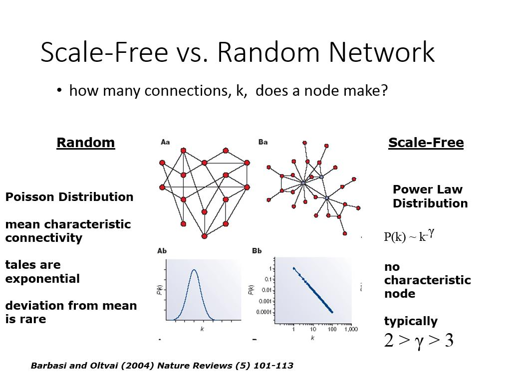 Scale-Free vs. Random Network