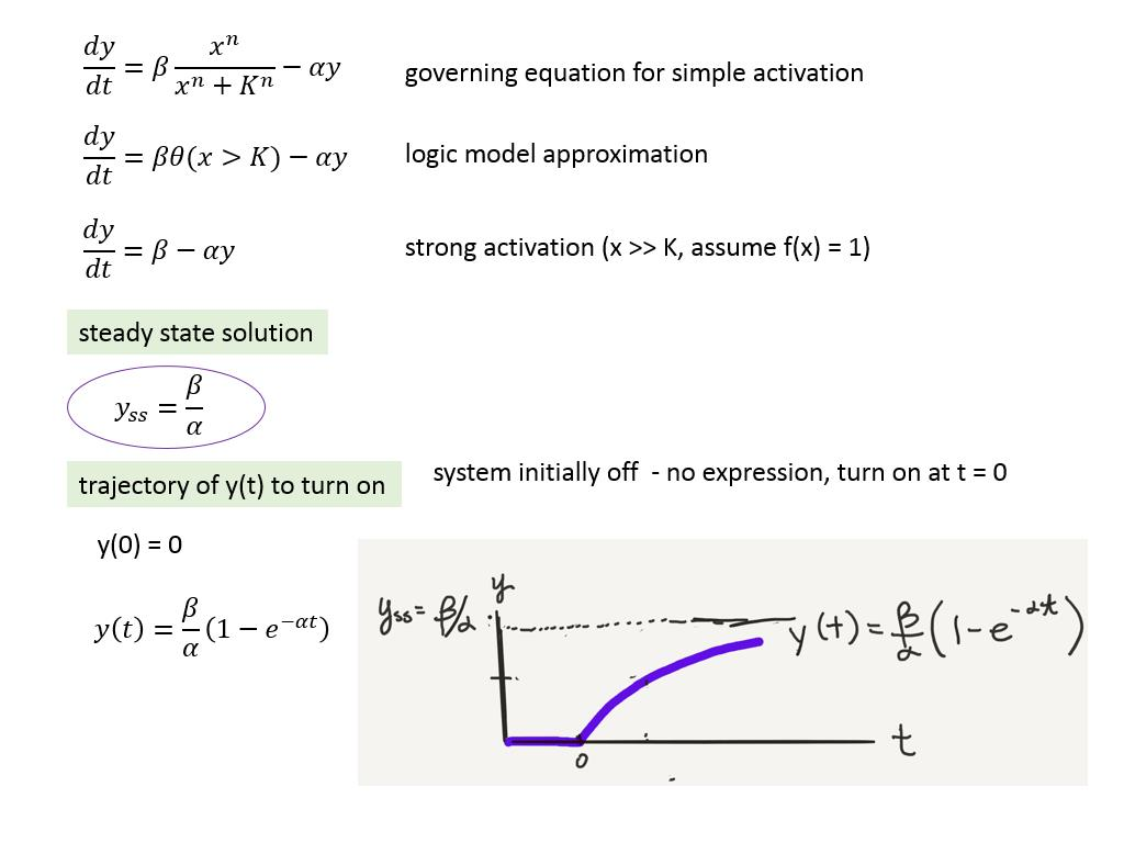 governing equation for simple activation