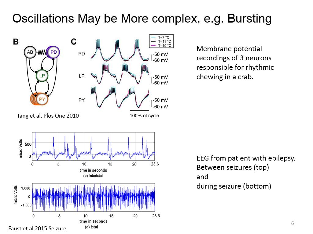 Oscillations May be More complex, e.g. Bursting