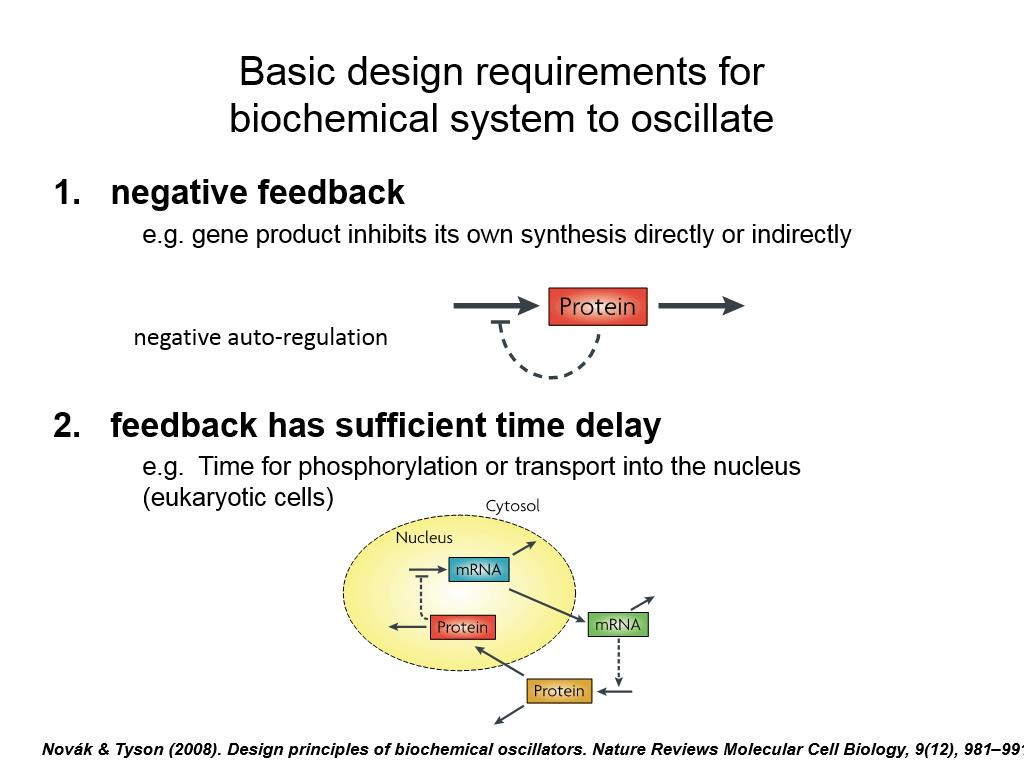 Basic design requirements for biochemical system to oscillate