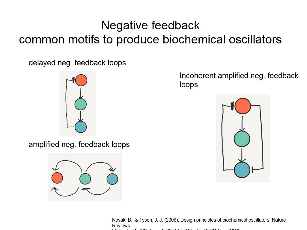 Negative feedback common motifs to produce biochemical oscillators