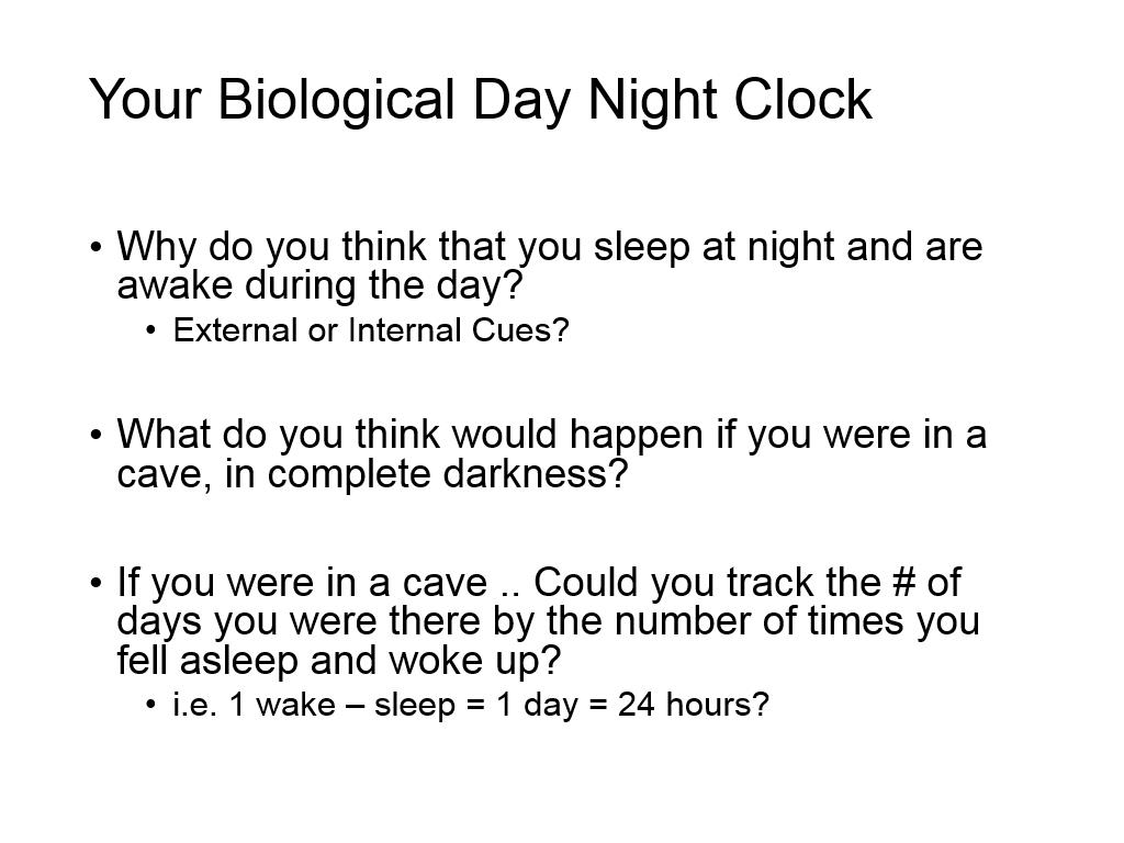 Your Biological Day Night Clock