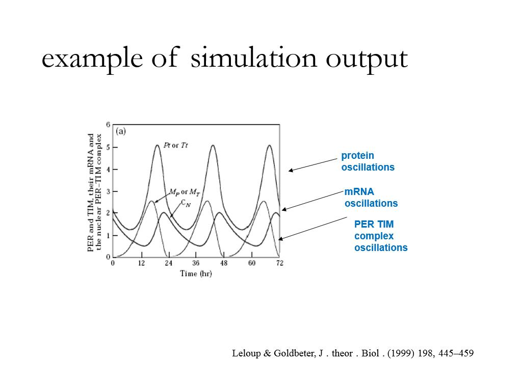 example of simulation output