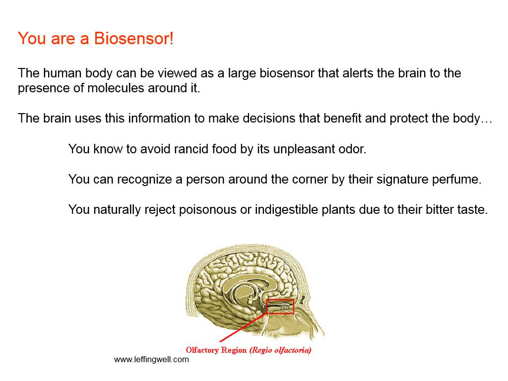 You are a Biosensor!