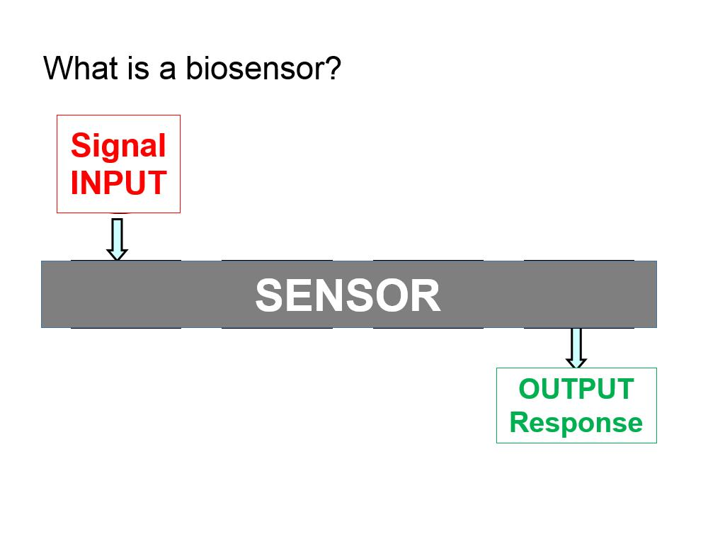 What is a biosensor?
