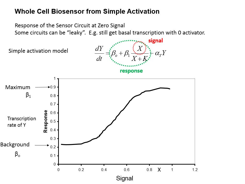 Whole Cell Biosensor from Simple Activation