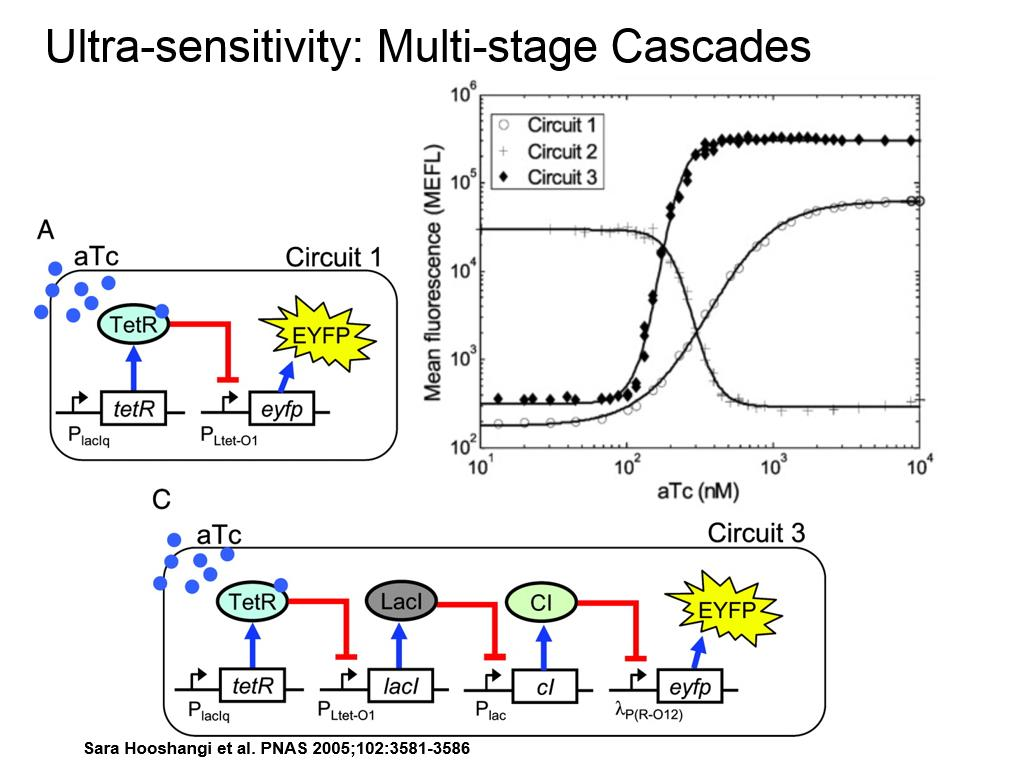 Ultra-sensitivity: Multi-stage Cascades