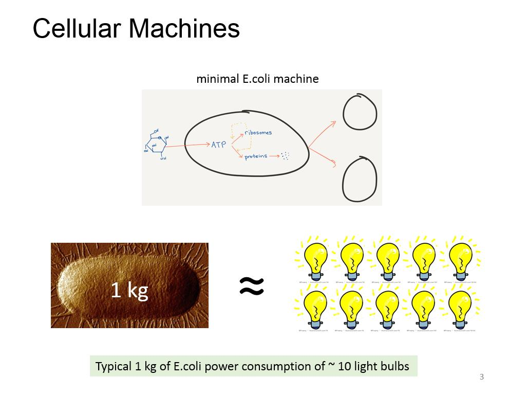 Cellular Machines