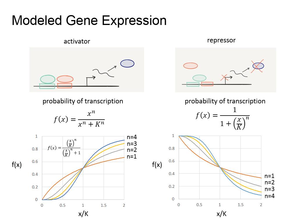Modeled Gene Expression
