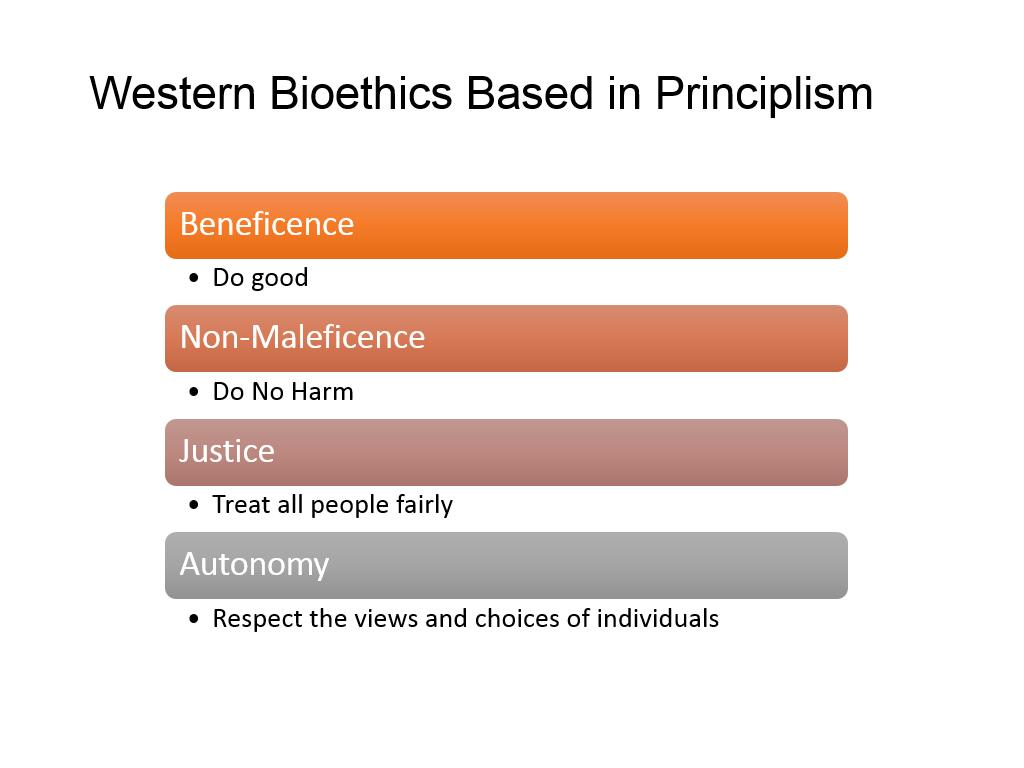 Western Bioethics Based in Principlism