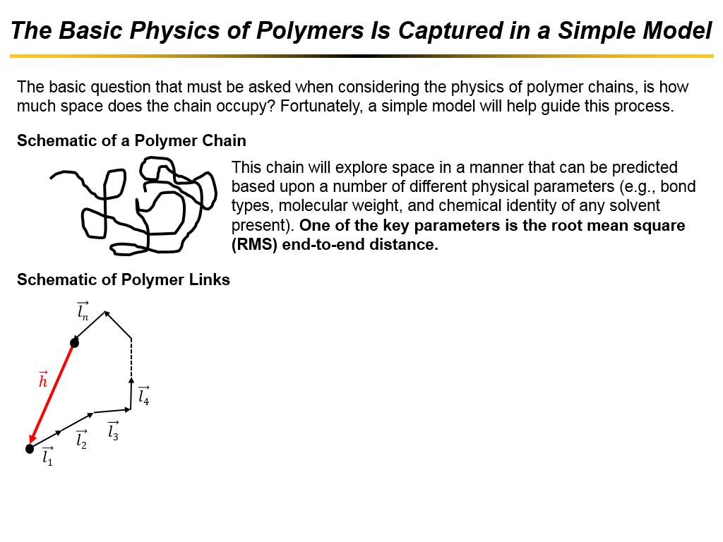 The Basic Physics of Polymers Is Captured in a Simple Model