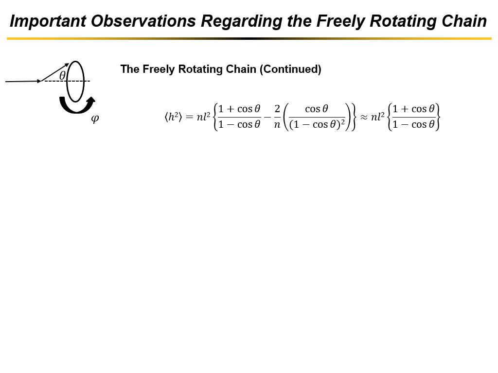 Important Observations Regarding the Freely Rotating Chain