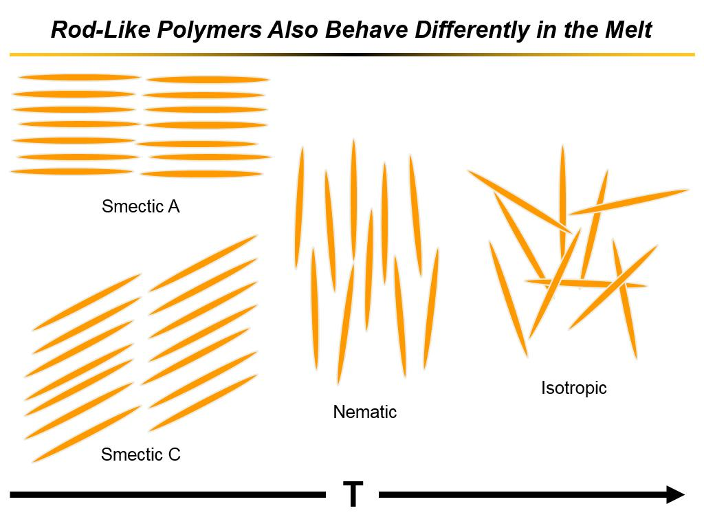 Rod-Like Polymers Also Behave Differently in the Melt