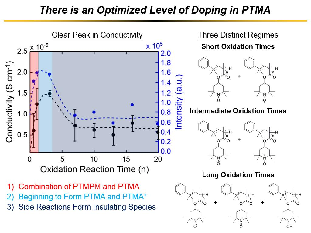 There is an Optimized Level of Doping in PTMA