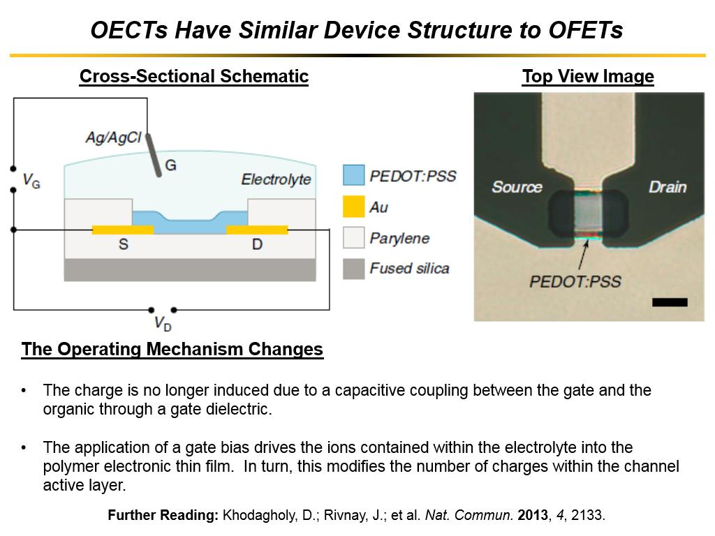 OECTs Have Similar Device Structure to OFETs