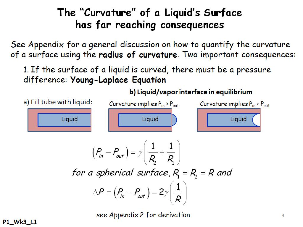 The Curvature of a Liquid's Surface has far reaching consequences