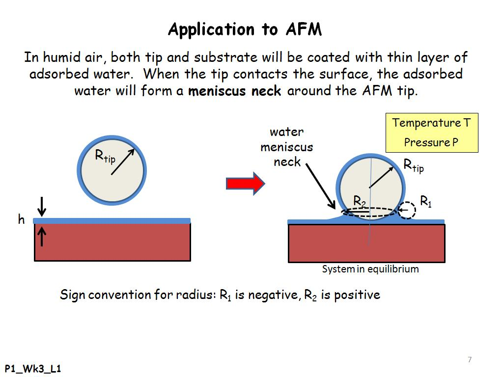 Application to AFM