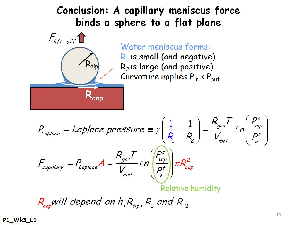 Conclusion: A capillary meniscus force binds a sphere to a flat plane