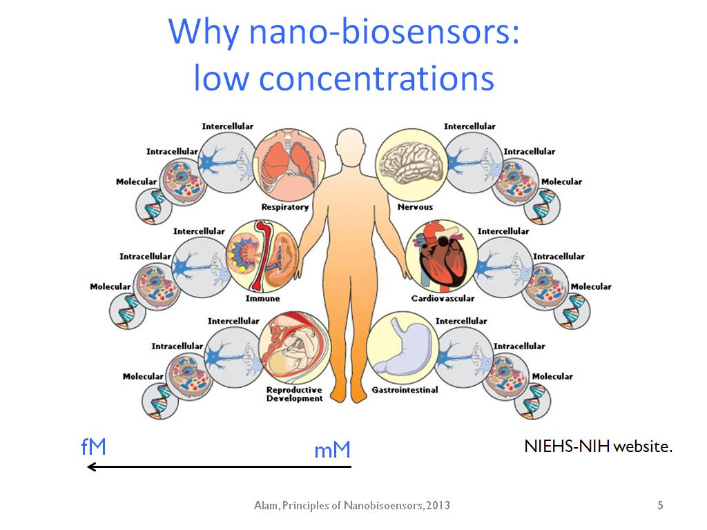 biosensors nano Low cost materials and advances in nano and micro fabrication techniques within the manufacturing process have led to enzyme-based & nano-enabled biosensors.