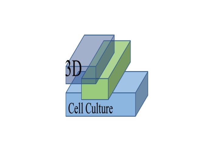 3D CELL CULTURE Logo