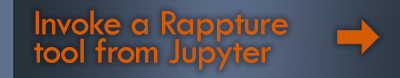 Invoke a Rappture tool from Jupyter