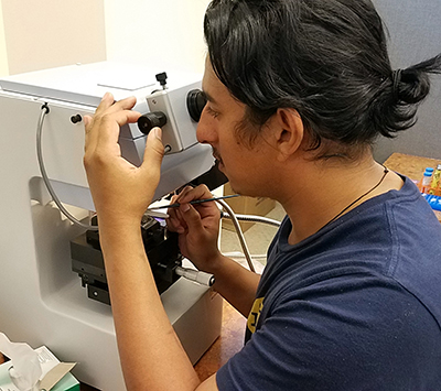 Examining nanoparticles with a microscope