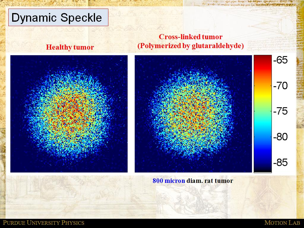 Dynamic Speckle