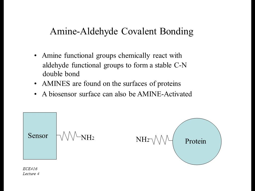 Amine-Aldehyde Covalent Bonding