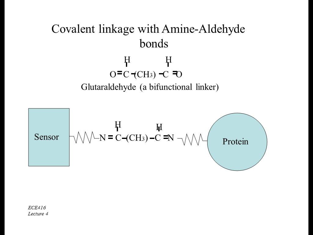 Covalent linkage with Amine-Aldehyde bonds