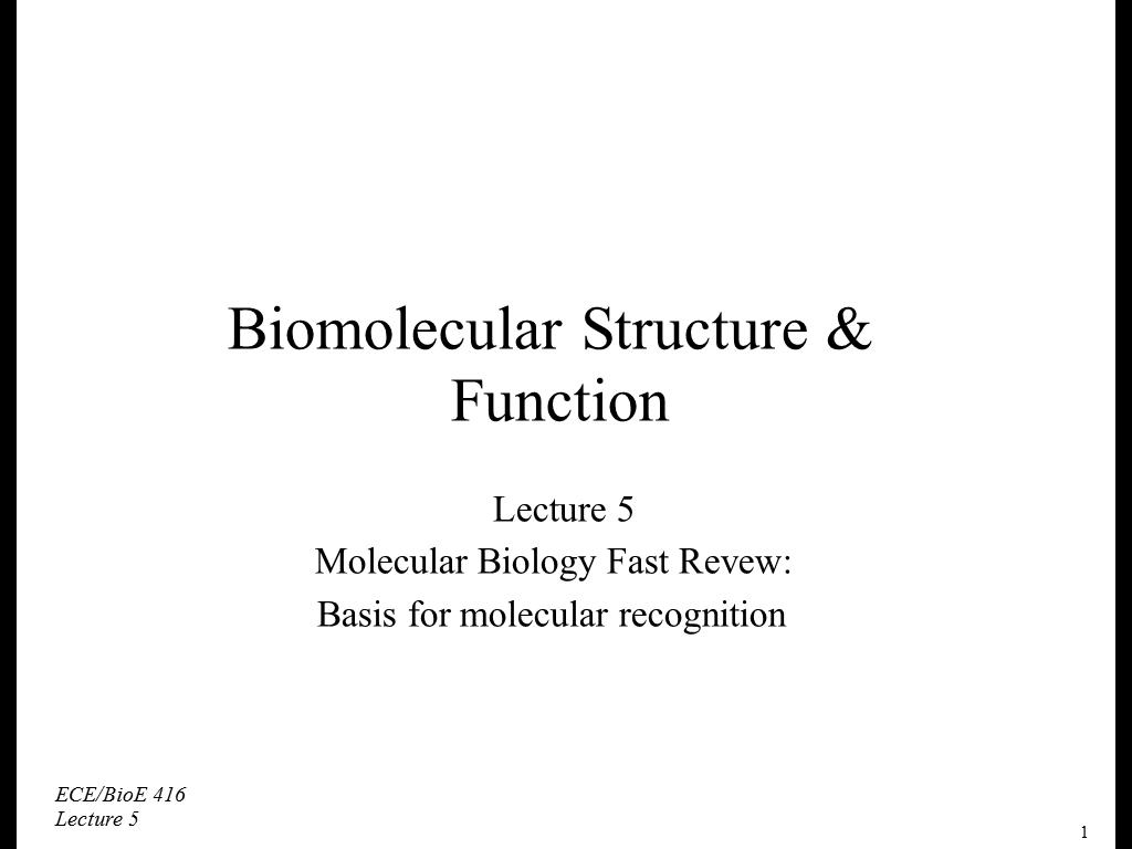 Lecture 5: Biomolecular Structure & Function