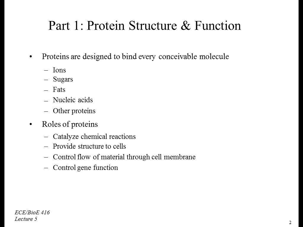Part 1: Protein Structure & Function