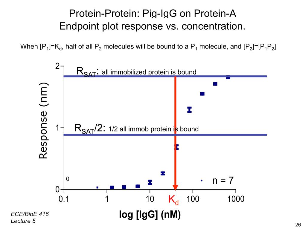 Protein-Protein: Pig-IgG on Protein-A
