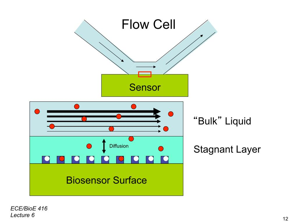Flow Cell