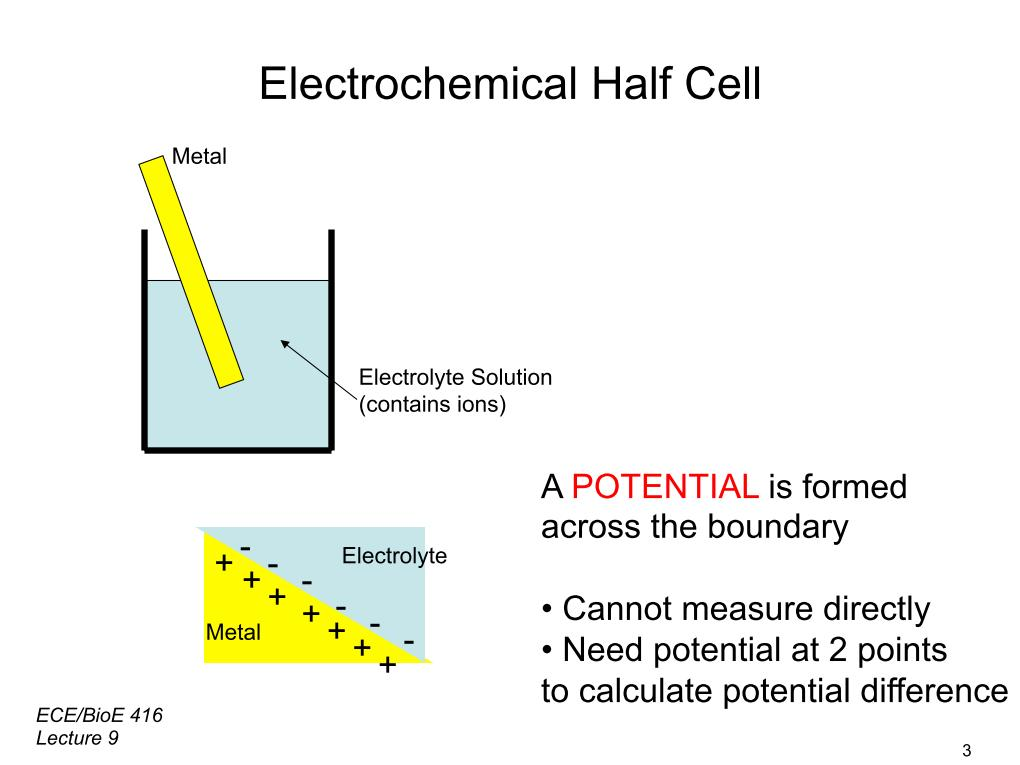 Electrochemical Half Cell