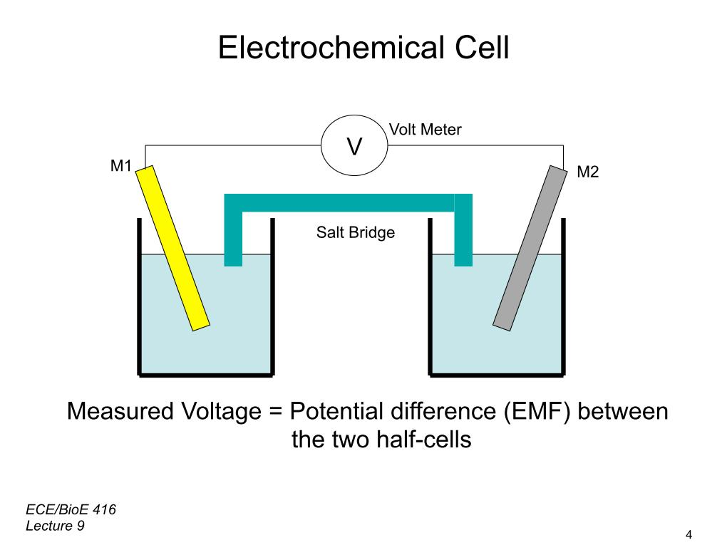 Electrochemical Cell
