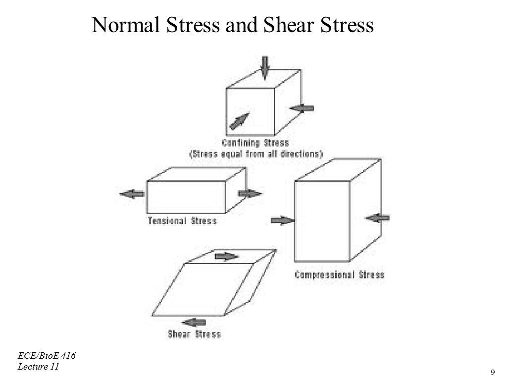 differentiate between stress and strain engineering essay Category: essays research papers title: stress and stain  of different materials  so that he can select the most suitable material for each part of a machine  area  of applied mechanics for the study of the strength of engineering materials and  their  if the stress and strain are not the same for all materials, then it is found by .