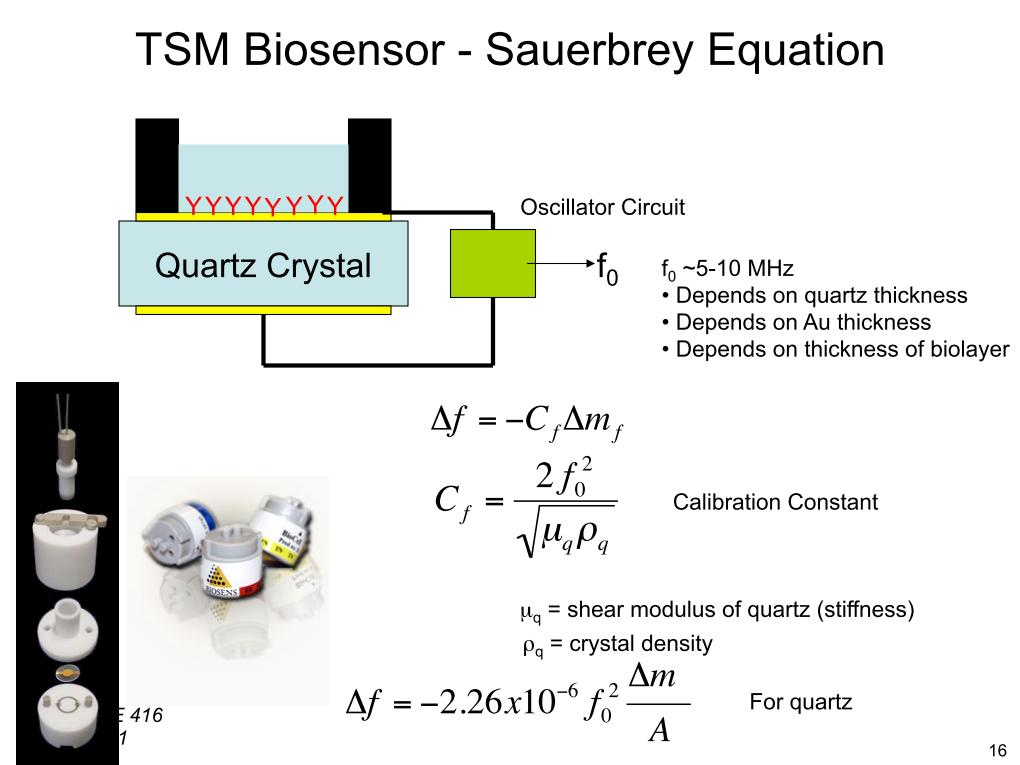 TSM Biosensor - Sauerbrey Equation