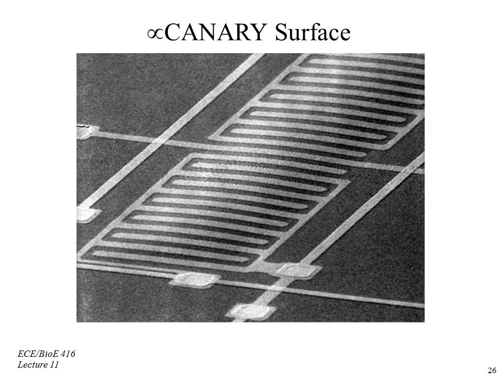 μCANARY Surface