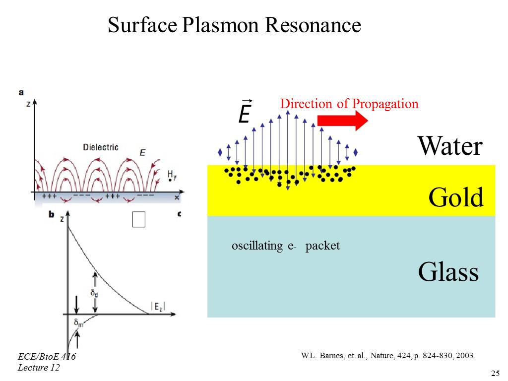 Surface Plasmon Resonance Biosensors