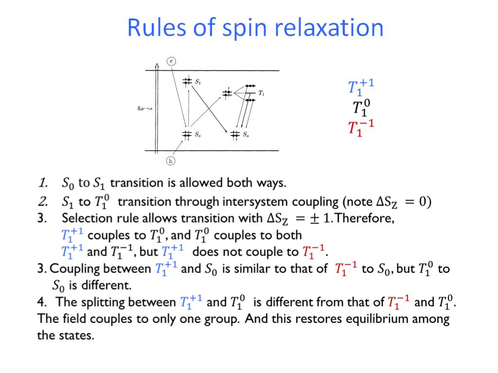 Rules of spin relaxation