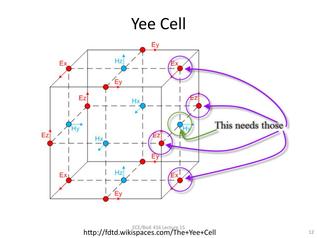 Yee Cell