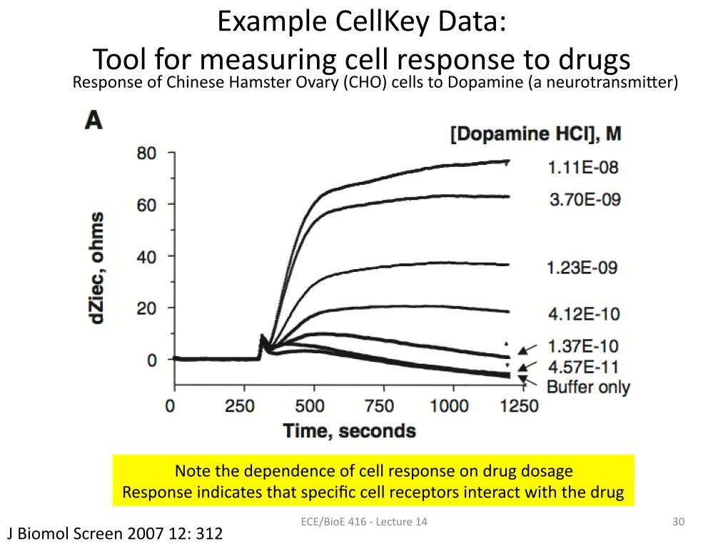 Example CellKey Data: Tool for measuring cell response to drugs