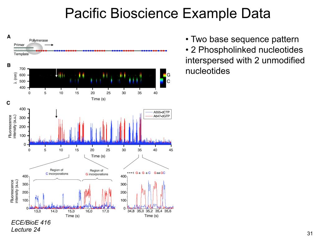 Pacific Bioscience Example Data