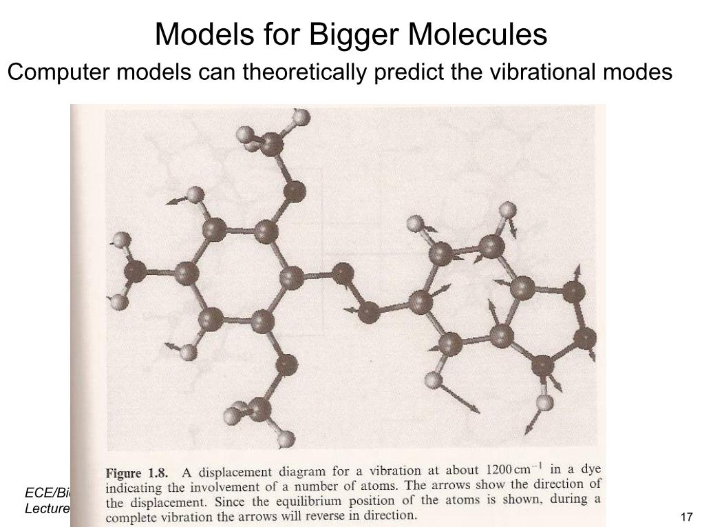 Models for Bigger Molecules