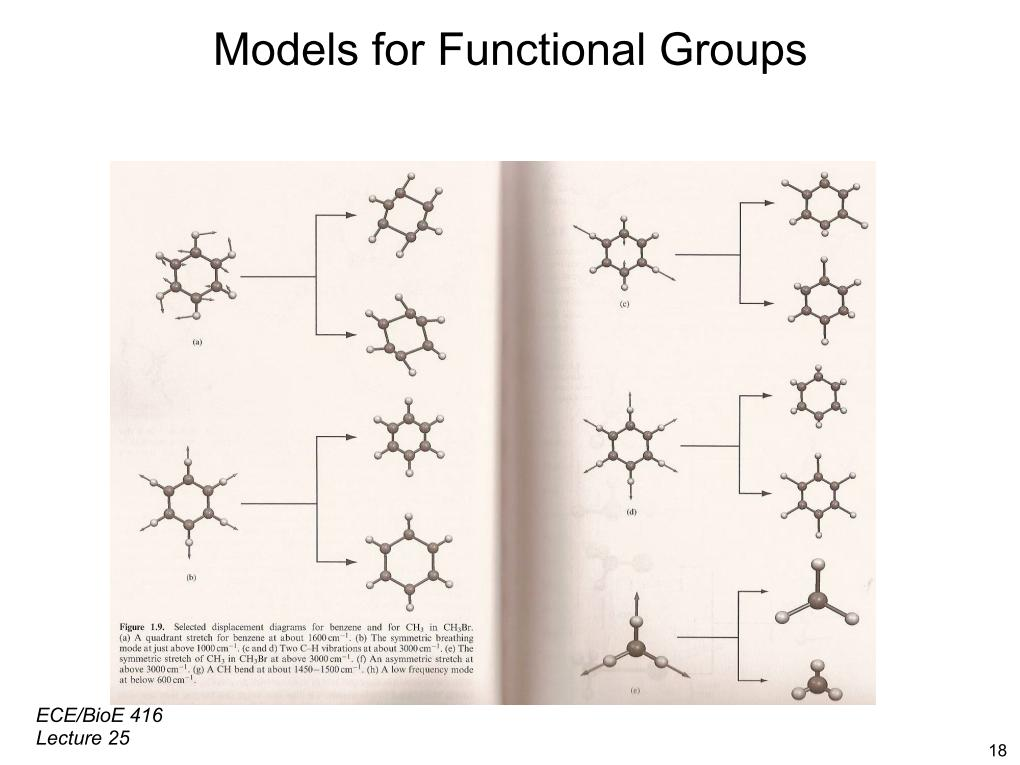 Models for Functional Groups